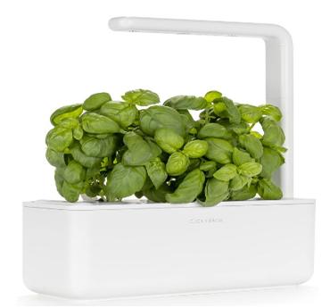 Smart Garden Gadget
